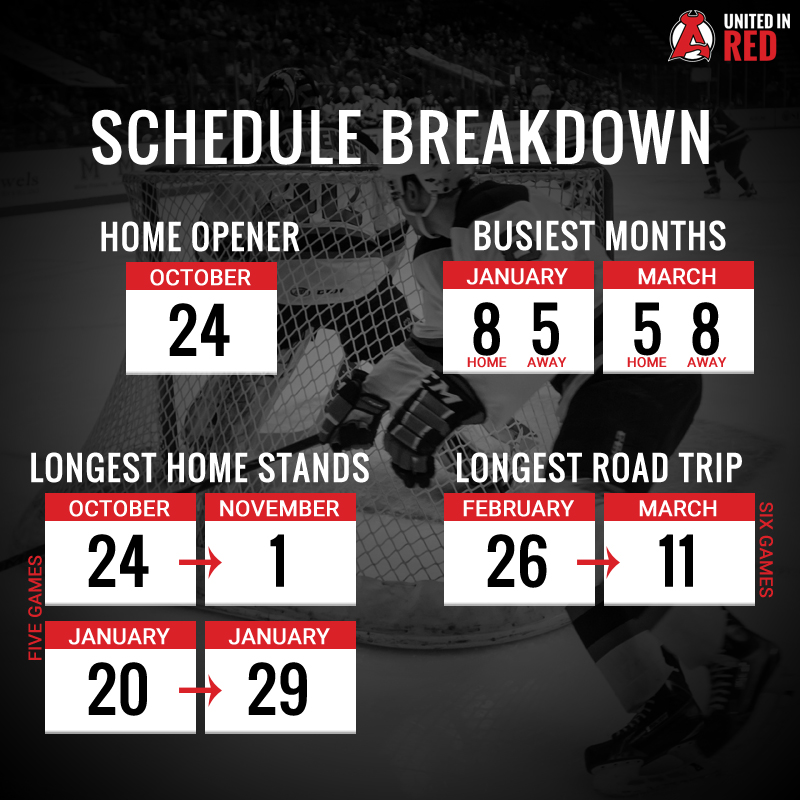 Schedule-Breakdown-Infograp